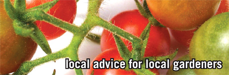 local advice for local gardeners